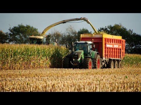 Majs 2014 | krone Big X, Claas Jaguar, Fendt, Case IH, Fliegl, Schuitemaker | Maize / Mais / Corn