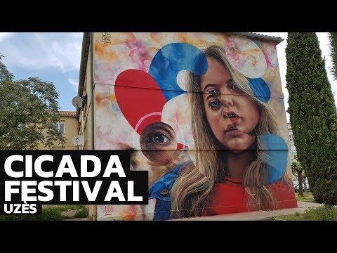 Cicada festival, du street art au coeur de la ville d'Uzès