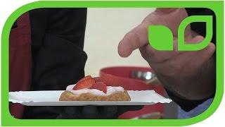 Tartelette mit Hibiscusquark und frischen Erdbeeren: Degustation auf Schloss Ippenburg. Teil 3