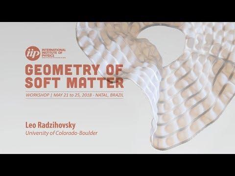Boulder Fracton-Elasticity Duality - Leo Radzihovsky