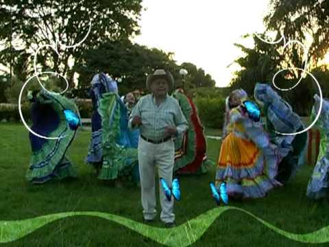 MENSAJE NAVIDEÑO LLANERO BARINAS TV 2009