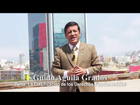 Programa 20 - La clasificación de los derechos fundamentales - Tribuna Constitucional - Guido Aguila