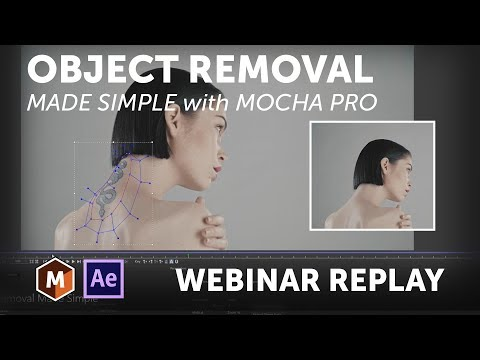 Mocha Pro Webinar: Object Removal Made Simple