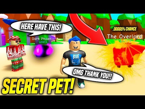 OMG SOMEONE TRADED ME THE RAREST SECRET PET IN BUBBLE GUM SIMULATOR!! *INSANE STATS* (Roblox)
