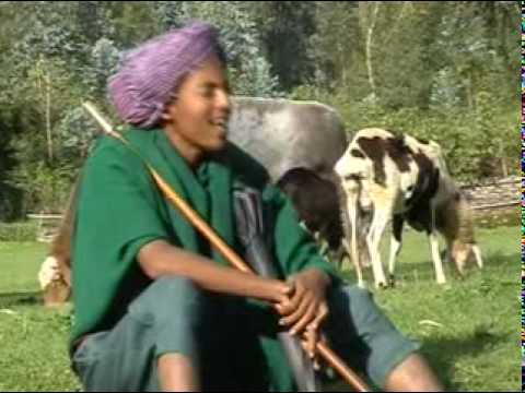 Ethiopian Gojam Agwe new song Shemlalelale