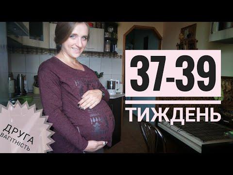 37-39 тиждень: УЗД, останній візит у ЖК, підсумки вагітності | Третій триместр