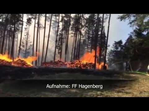 Waldbrand in Unterweitersdorf