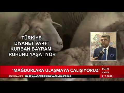 Türkiye Diyanet Vakfı kurban hazırlıklarını tamamladı