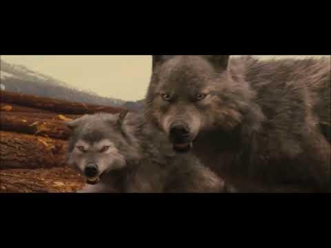 Twilight Wolves- Warriors (Imagine Dragons)
