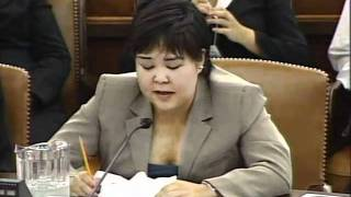 November 5th, 2007: Select Committee Hearing,