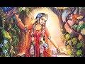 Tulasi Maharani ~ Krishna Premi Dasi