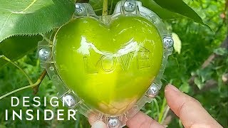 Mold Shapes Growing Fruits Into Hearts And Stars