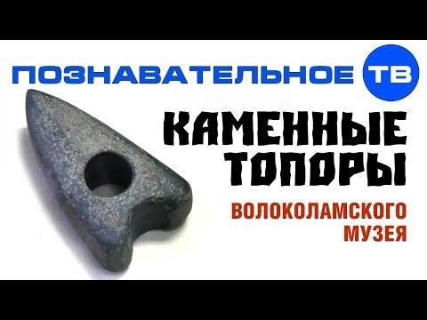Каменные топоры Волоколамского музея (Познавательное ТВ Артём Войтенков) - DomaVideo.Ru