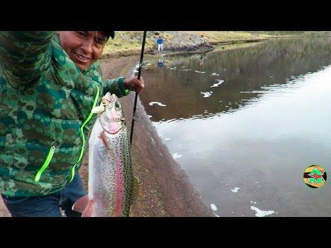 Videos caseros - Emocionante PESCA DE TRUCHAS GRANDES EN LAGUNA - Pescando Truchas