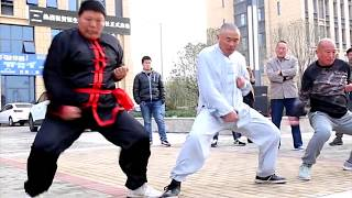 Video Kung Fu Fools & Martial Art Fails MP3, 3GP, MP4, WEBM, AVI, FLV Oktober 2018