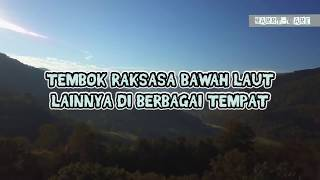 Download Video 176 - Gempar!  Tembok Raksasa DITEMUKAN Mengitari Bumi di Bawah Laut ? MP3 3GP MP4
