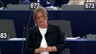 Felszólalás az Európai Határ- és Parti Őrségről szóló vitában – Strasbourg, 2016.07.05.