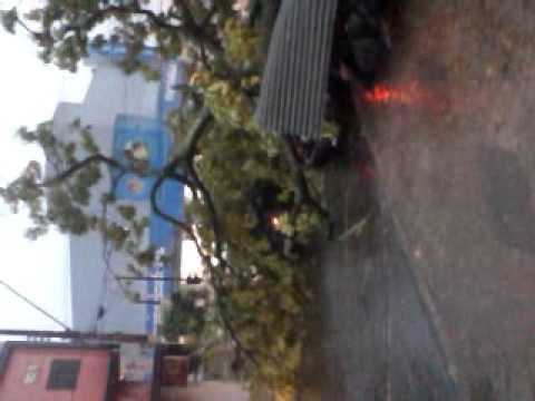 Vento forte derruba árvores sobre carros em Matão SP Parte 1