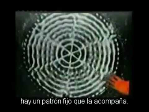 EL VÍDEO QUE ESTA DESPERTANDO AL MUNDO. ilusión y realidad.