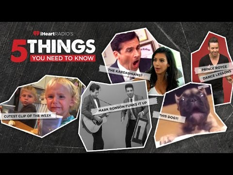 The 5 Things You Need To Know