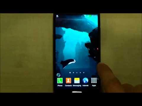 Video of 3D Sharks Live Wallpaper