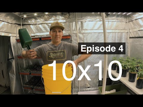BuildASoil: 3x3 Living Soil Bed 10x10: Episode #4