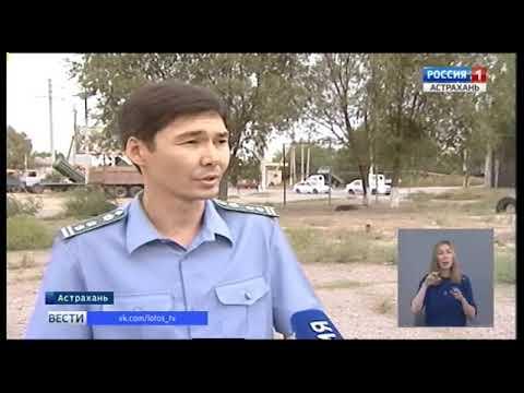 На территории Астраханской области активно ведется борьба с амброзией полыннолистной