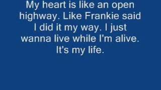 Bon Jovi - It's my life w/ lyrics Video