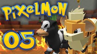 Pixelmon - Episode 5 | Burnin Up the Safari Zone! by Munching Orange