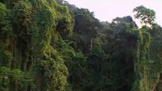 Andaman and Nicobar Islan India  city photo :