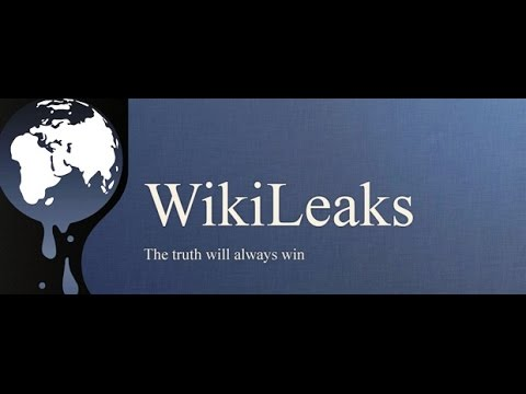 Wikileaks Video Report: »First they came for Assange«