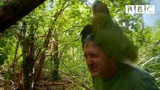 Download Youtube: Shagged by a rare parrot - Last Chance To See - BBC Two