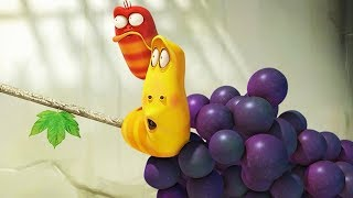 Video LARVA - GRAPE SWING | Cartoon Movie | Videos For Kids | Larva Cartoon | LARVA Official MP3, 3GP, MP4, WEBM, AVI, FLV April 2019