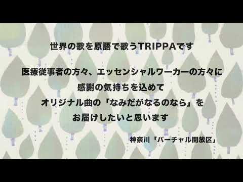 神奈川「バーチャル開放区」TRIPPA「なみだがなるのなら」の画像