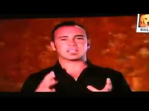 Dogs 101 - Poodle part 2 (видео)