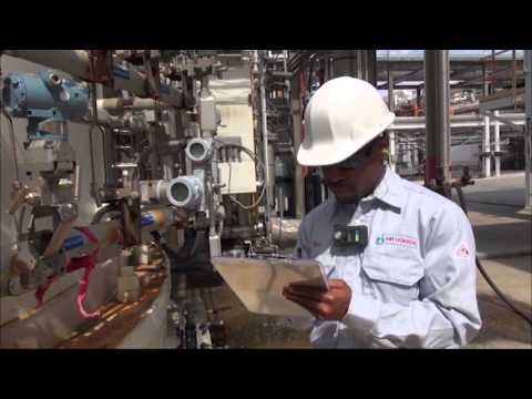 L'Air Liquide S.A. (Air Liquide) – Development Programs, Internships