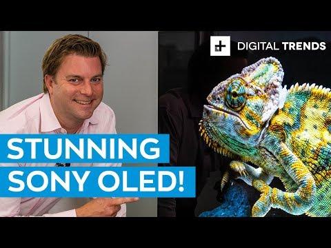 Sony A9G 4K HDR OLED TV Unboxing and Basic Setup