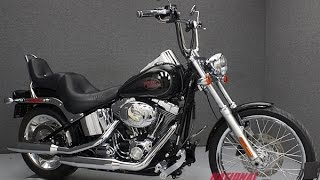 9. 2009 HARLEY DAVIDSON FXSTC SOFTAIL CUSTOM  - National Powersports Distributors