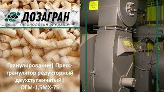 Видео ОГМ - Пресс-грануляторы редукторные двухступенчатые