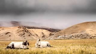 A short timelapse video of the Tsomoriri lake in Ladakh, India. Tsomoriri or Lake Moriri is a salt lake located in the Changthang...