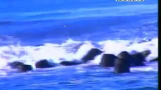 Bulan Batu Hiu ~ Kang Doel Sumbang