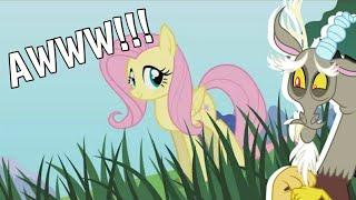 Video Discord Reacts to Pony Girl (Fluttershy Version) MP3, 3GP, MP4, WEBM, AVI, FLV Mei 2019
