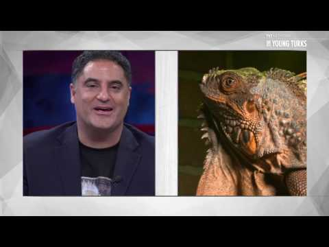 TYT Lizard Mariguana Interviewed By Cenk Uygur