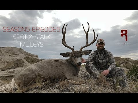 Spot & Stalk Archery Mule Deer S5E5 Seg2