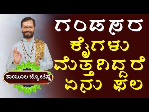 Astrology 2017   Spiritual Astrologer   Ravi Shanker Guruji   Horoscope Zodiac Signs   About Men