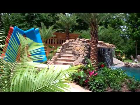 Video Palm Trees For Pools Dallas Austin San Antonio Tx Texas Pool landscaping download in MP3, 3GP, MP4, WEBM, AVI, FLV January 2017