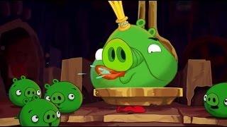 Angry Birds Злые Птички СВИНЬИ ТАЛАНТЫ ...