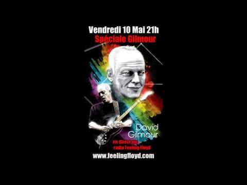 Spéciale David Gilmour Vendredi 10 Mai 2013 21h !!