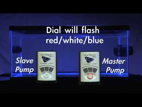 Setting Up a Master/Slave Relationship (2 Pump Configuration)