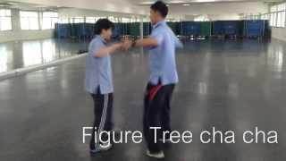 ลีลาศ ชะชะช่า Fan+alemena+tree chacha+quick step